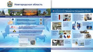 новгородская обл 17.03.2015